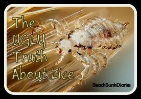 Truth About Lice2