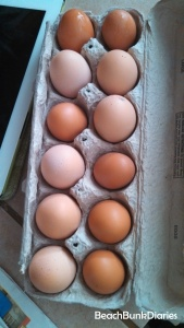 Our chickens have laid eggs ranging from almost white to a very dark brown over the years.  There is no difference in flavor or nutrition in egg colors.