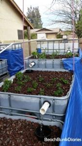 plantedgardena